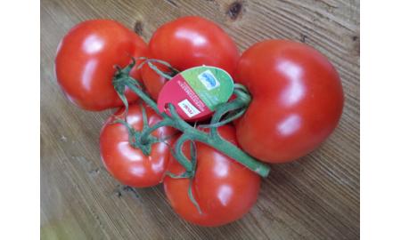 Biologische tomaten zonder plastic verpakking